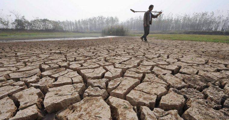 วิกฤติภาคเกษตรไทย